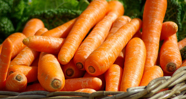 carrot oil for hair and skin