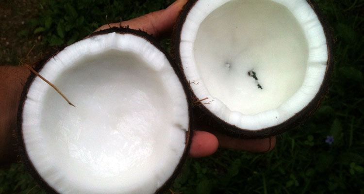 get the most out of coconut oil