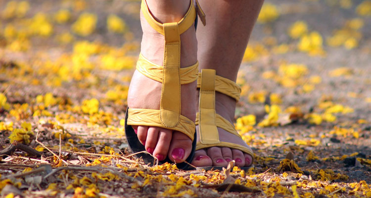 Easy Guide) How to Get Rid of Toenail Fungus with Tea Tree Oil