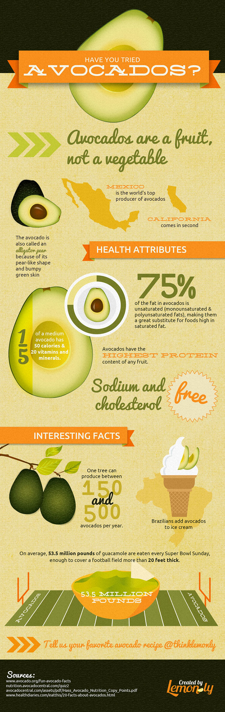 infographic avocado