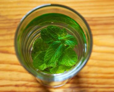 spearmint tea benefits